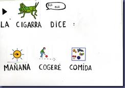 CIGARRAYHORMIGA0009